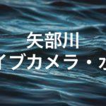矢部川のライブカメラ・水位