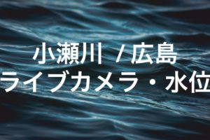 小瀬川のライブカメラ・水位