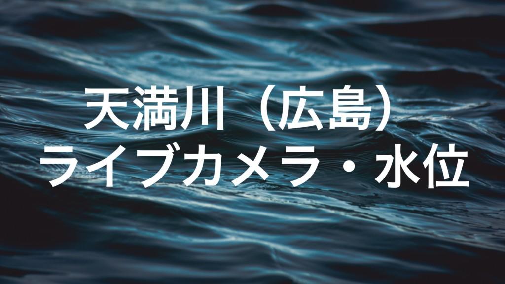 天満川のライブカメラ・水位
