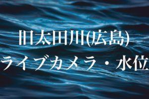 旧太田川のライブカメラ・水位