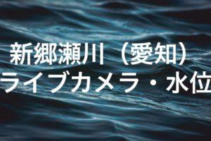 新郷瀬川のライブカメラ・水位