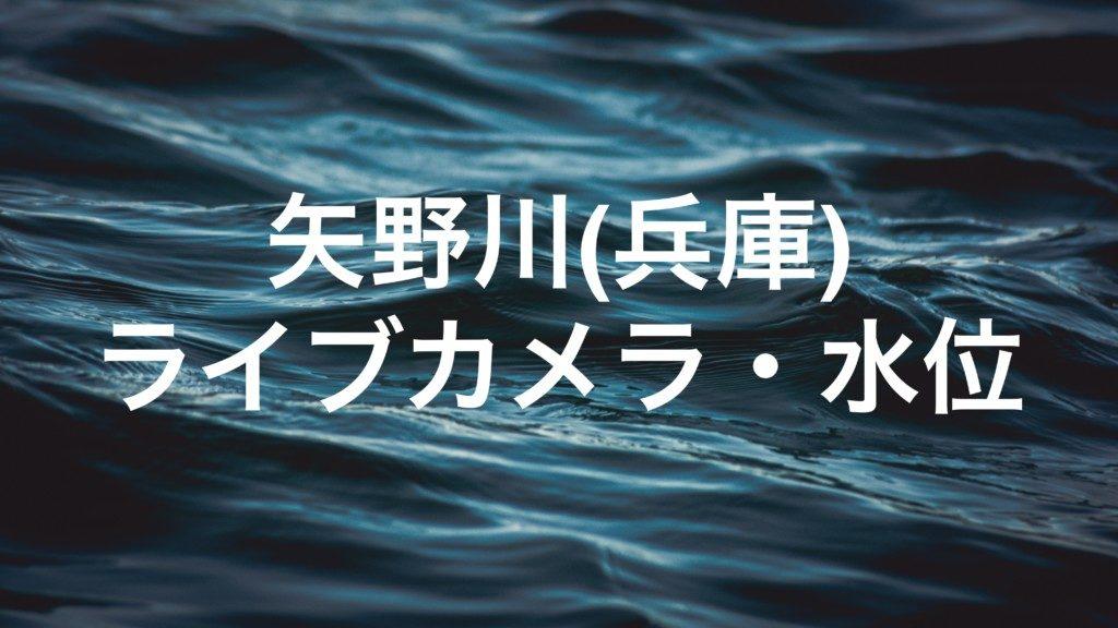 矢野川(兵庫)のライブカメラ・水位
