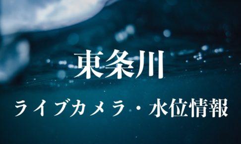 東条川のライブカメラ・水位情報