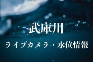 武庫川のライブカメラ・水位情報