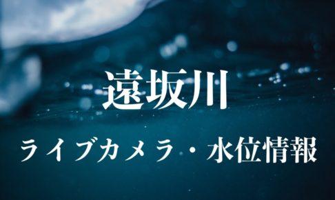 遠坂川のライブカメラ・水位情報