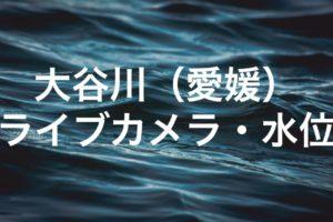 大谷川(愛媛)のライブカメラ・水位