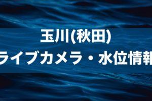 玉川(秋田)のライブカメラ・水位