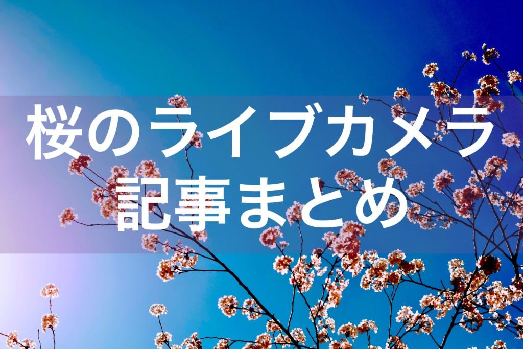 全国の桜のライブカメラ記事まとめ