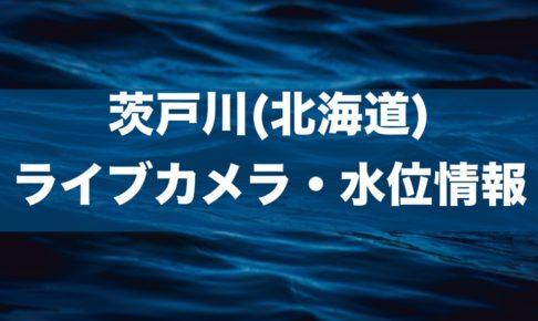 茨戸川のライブカメラ・水位